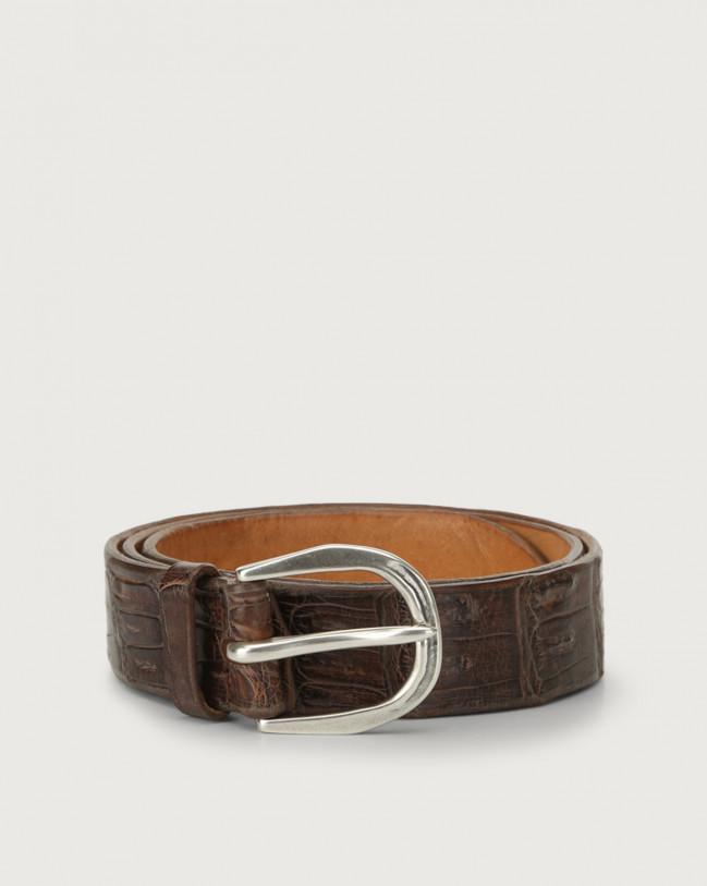 Orciani Cocco Coda Color classic crocodile leather belt Crocodile Leather Chocolate